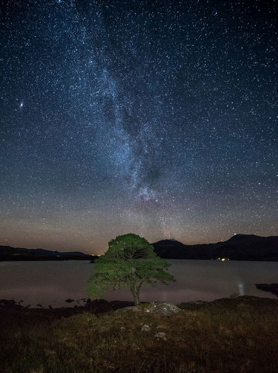 Loch and a tree Night Astronomy Beauty In Nature No People Landscape EyeEm Selects Scotland EyeEm Masterclass Landscape Photography EyeEm The Best Shots EyeEm Gallery EyeEmNewHere Milky Way Travel