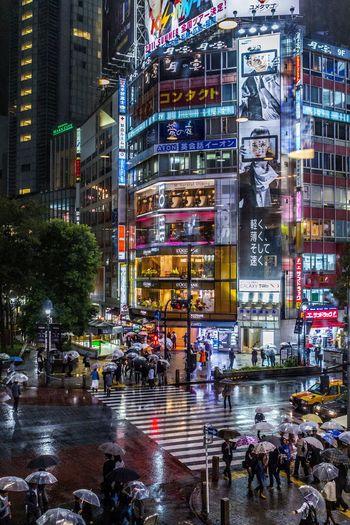 Colorful nights Shibuya Japan Night People City Life Street Outdoors Wet Illuminated Crowd