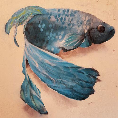 EyeEm Selects No People Multi Colored Close-up Graffiti Art Streetart Fish Emmanuelphotoartist Booking