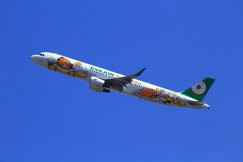 gudetama Gudetama Eva Air Komatsu Airplane Komatsu Airport Blue Sky