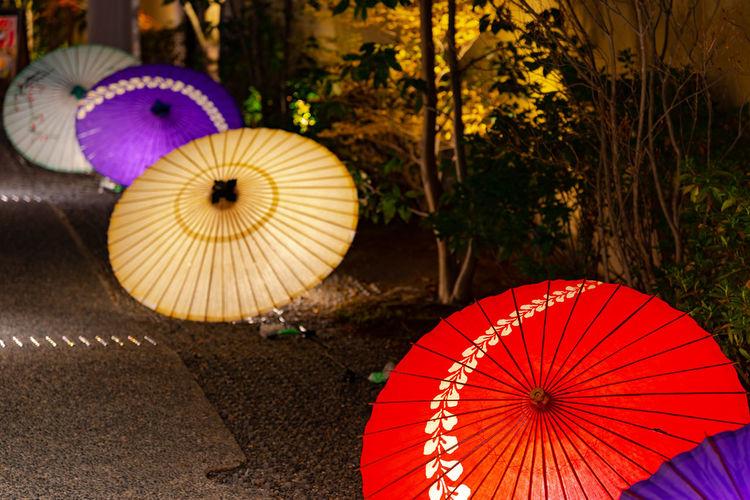 Close-up of illuminated lanterns hanging on tree
