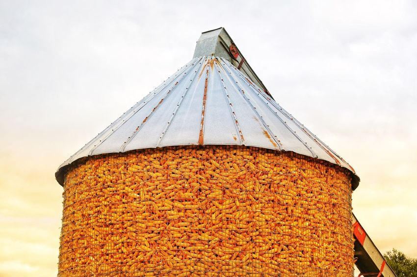 Harvest is over and the silo is full. Silo Amish Farm JGLowe Corn Sky Architecture Built Structure Nature No People Low Angle View Day Building Exterior Outdoors Decoration Cloud - Sky Metal Building Pattern Protection Roof High Section Christmas Decoration