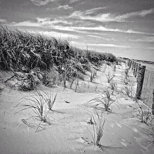 Beachphotography Black And White Landscape Duxbury, Ma Massachusetts Tranquil Scene Life Is A Beach Beach Landscapes With WhiteWall Landscape_photography Landscape_Collection
