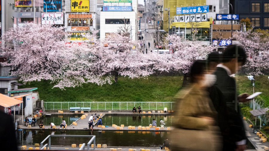 People standing by flowers against trees