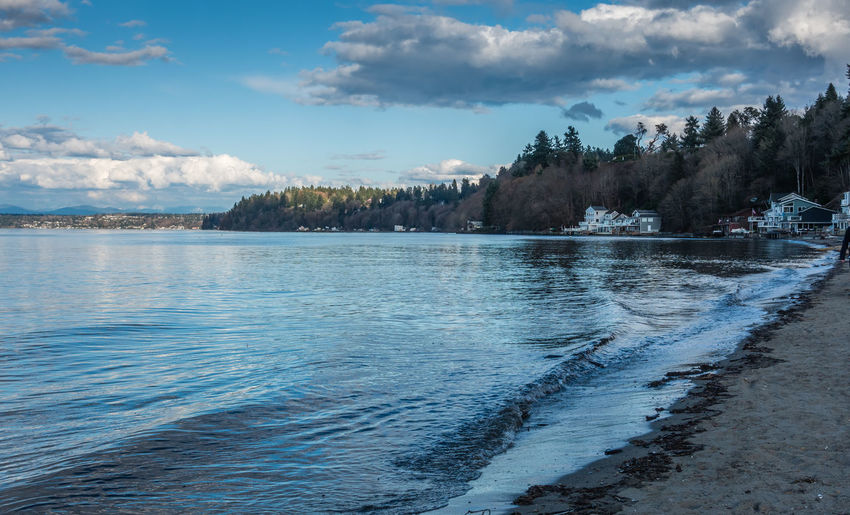 A view of the shoreline at Dash Point, Washington. Water Reflections Beauty In Nature Cloud - Sky Coast Dash Point Day Idyllic Land Nature No People Non-urban Scene Outdoors Plant Scenics - Nature Sea Shoreline Sky Tranquil Scene Tranquility Tree Water Waterfront