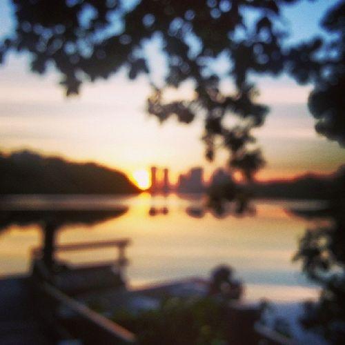 Sunset Sun Marapendi RJ uva