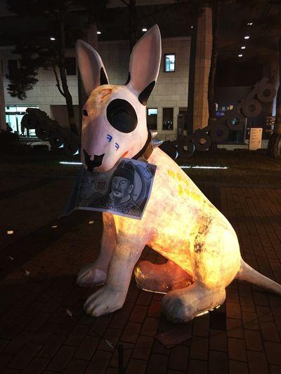 Money talks! Dog Night In December Seoul Money Looking For More Than Money Big Black Spot