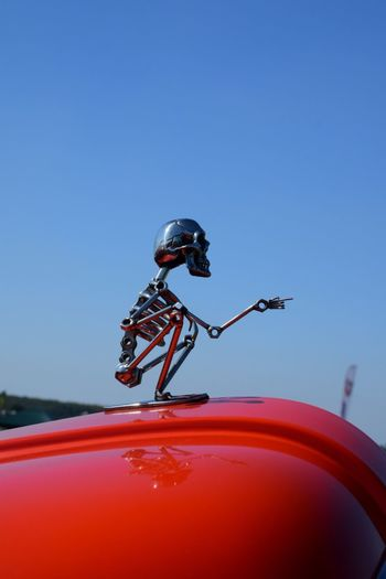 Picking the bones out of that Binnie Bell & Colvill Metal Man Skeleton Art Metallic Paint Vintage Style Vehicle Art Bonnet Emblem Sky Insect Invertebrate Animal Themes One Animal Animal Animal Wildlife Clear Sky Close-up No People Day Outdoors