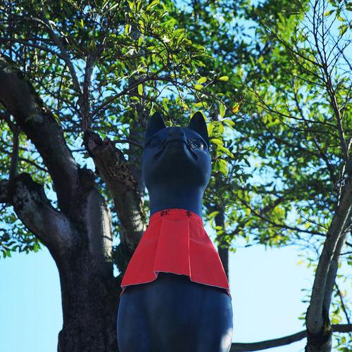 Shrine Of Japan Statue Day Fox Inariyama Outdoors Sky Tree