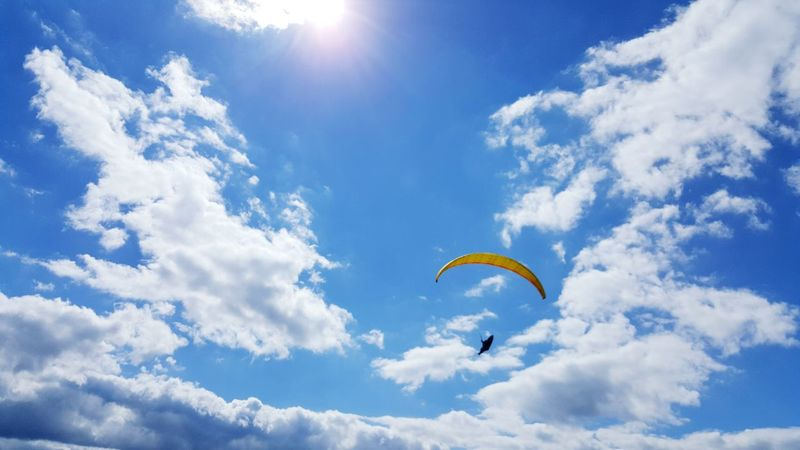 Segelfliegen Segelflieger Fly Flying Fly High Blue Sky Sky And Clouds Glider Gliding Blauer Himmel Wolken Wolkenhimmel Sun Sun Is Shining Sunshine Sonne Sonnig Harz Harzreise EyeEm Best Shots EyeEmBestPics Enjoying Life Check This Out Hanging Out