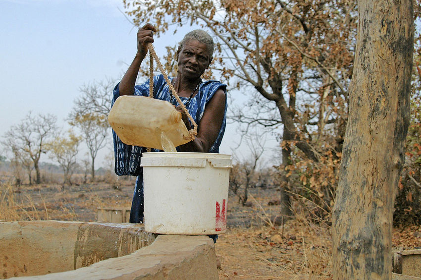 Ibel & Iwol traditional villages Senegal Traditional Culture Adult Bare Tree Bassari Bassari Country Day Iwol Occupation One Person Outdoors Senegal Standing Traditional Working