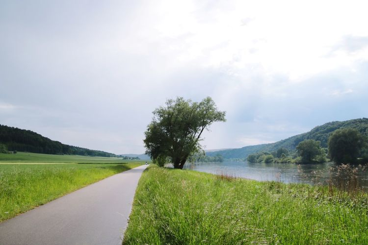 Unterwegs River Donau Donauradweg Danube River Danube Day Rural Scene Lake Empty Road Asphalt Countryside The Way Forward