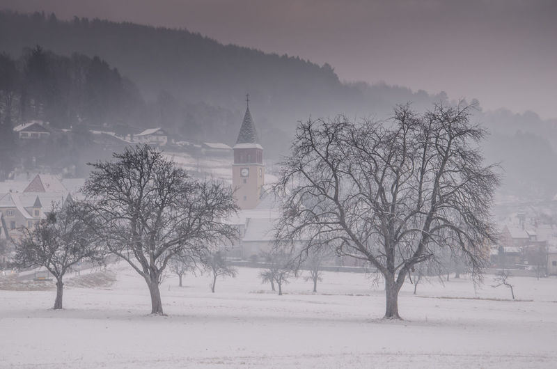 Tree Winter Landscape Nature Fog Beauty In Nature Exploring Krajobraz Alsace Road Exceptional Photography Nature Photography Exceptional Nature Landscape Photography EyeEmbestshots Exploring Nature Vosges Eyemcollections Nikonphotography Rural Scene Landscapephoto Mist Church Buildings Winter_collection Taking Pictures