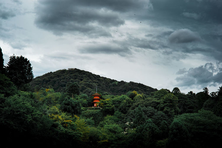 Beauty In Nature Cloud Cloud - Sky Cloudy Day Green Green Color Growth Hill Idyllic Japan Landscape Lush Foliage Mountain Nature Non-urban Scene Outdoors Plant Remote Scenics Sky Tranquil Scene Tranquility Tree Weather