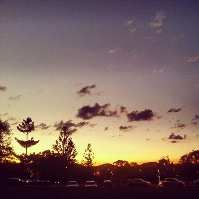 Sunset UQ