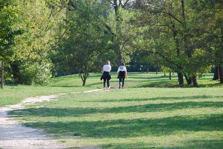 Green Color Nature Day Camminata Tra Amiche