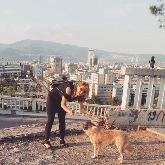 Çok sevdi beni şaşkın şey 😉🐶🐕 her ne kadar beni peşlesede sevimliydi 😊 Dog Köpek Karga Konak varyant izmir