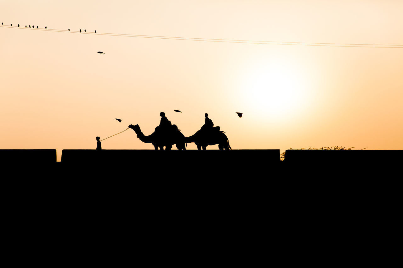 SILHOUETTE PEOPLE RIDING HORSE IN THE SUNSET