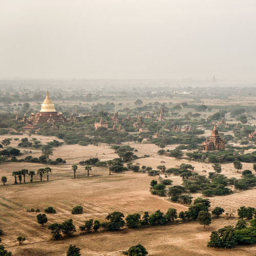 Pagoda Animal Themes Architecture Bagan Beauty In Nature Day Fog Hot Air Balloon Hotairballoon Landscape Mammal Myanmar Nature No People Outdoors Scenics Sky Travel Destinations Tree