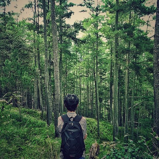 My self.. The Forest In My Backyard in Burtelege