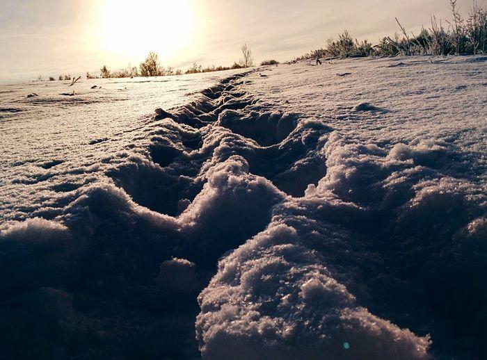 Зимний закат тут у нас