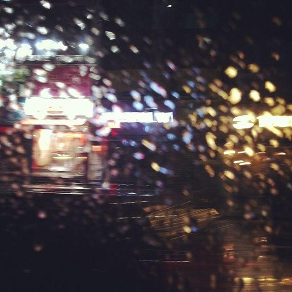 창문 비 버스 생각 흐릿