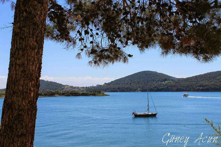 Burgazada At Burgazada Sea Tree Sky Cam Sea And Sky Sea_collection Open Edit Open Air