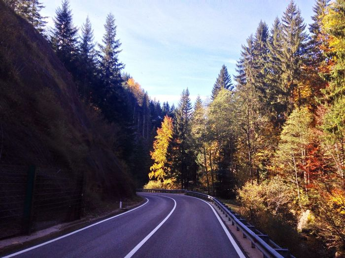 282/365 October 9 2017 One Year Project Autumn Autumn Colors Autumn Leaves South Tyrol Italy Trentino Alto Adige Alto Adige Tree Road The Way Forward Road Marking Transportation Nature Tranquil Scene No People Day Tranquility Outdoors Landscape Beauty In Nature Sky Scenics Perspectives On Nature