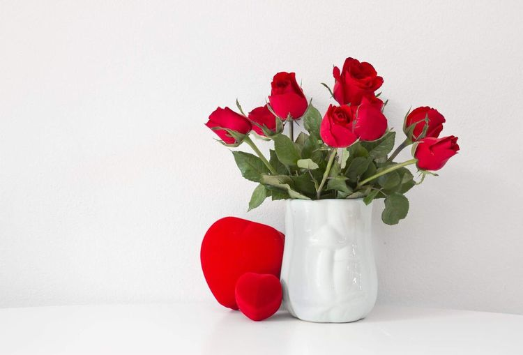 Valentine set Flower Vase Red White Background No People Indoors  Rose - Flower Studio Shot Bouquet Flower Head Close-up Nature Freshness Beauty In Nature Fragility Day