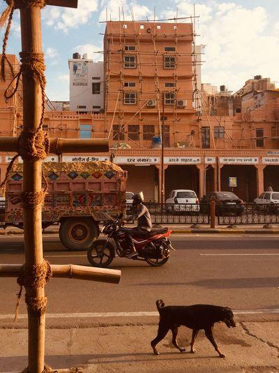 India Rajasthan