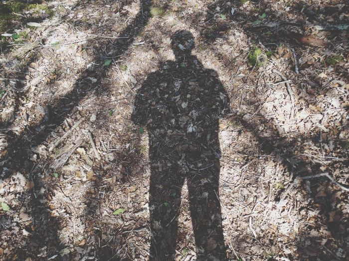 Shadow. Shadow Shadows Leaves Shadow On Ground Mans Shadow Silhouette Nature Outdoors Woods Forest Shadow Of Man Photography Floor Ground Textures And Surfaces Leafy Floor Dark Outside