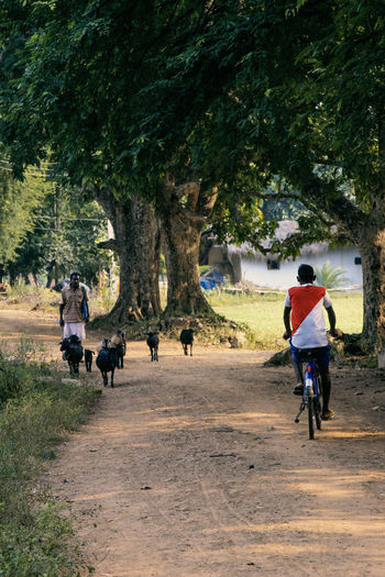 Rear view of people riding bicycle on road