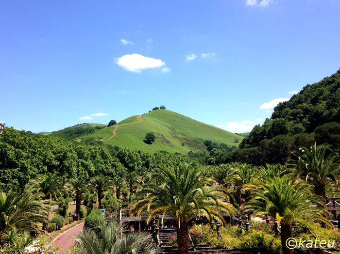Pays basque - collines vertes Cambo Les Bains Pays Basque Hills Green Colline Landscape_Collection