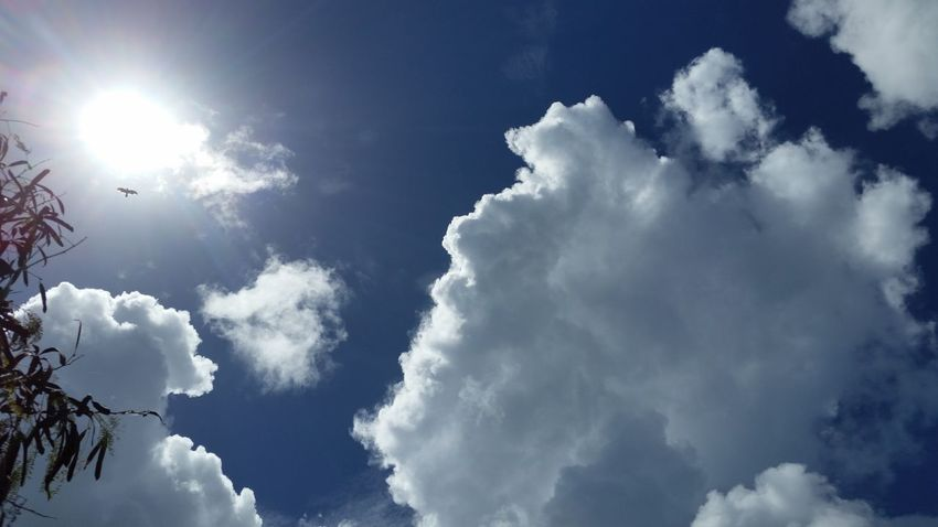 Clouds And Sky Cloud Formations Sun Eclipsed By Clouds Bird No Edits No Filters @ Constitution HillChicken Hawk