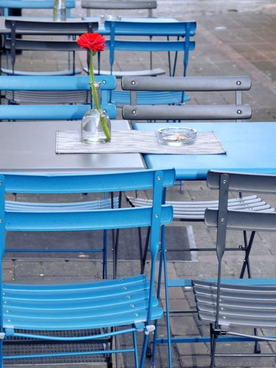 Streetcafe Ashtray  Vase Orange Flower Table No People Blue Chair Indoors  Education Day