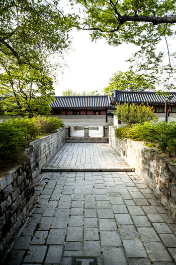 Architecture Changduk Palace Chosun Dynasty Drain Famous Place Historical Place No People Normal People Scare Me Roof Tile Tranquility