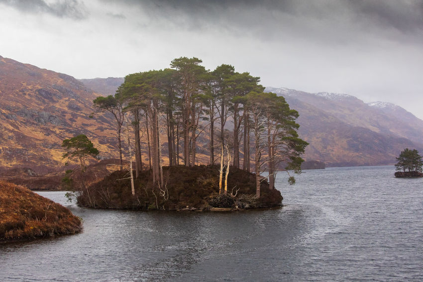 Scotland Tadaa Community Beauty In Nature Cloud - Sky Day Environment Formation Highlands Of Scotland Land Loch Eilt Mountain Nature No People Non-urban Scene Outdoors Plant Rock Scenics - Nature Scottish Highlands Sky Tranquil Scene Tranquility Tree Water Waterfront