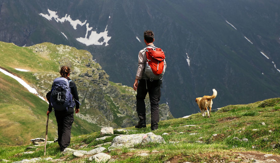 Rear View Of People With Dog Standing Against Mountains