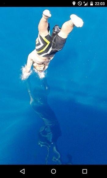 Skin Diving Swimming Sea Life