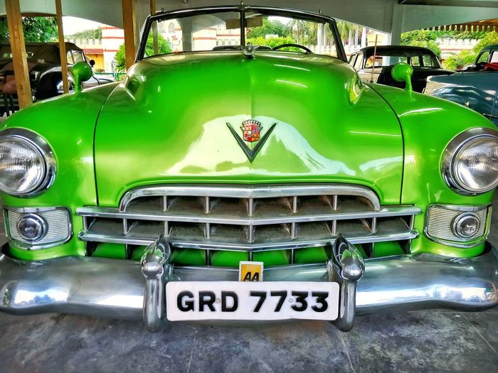 Green Color Love Photography Close-up Clear Photo Never Settle Classic Design Wallpaper History Car Interior Vintage Cat Lovers Photography Souls Adventure