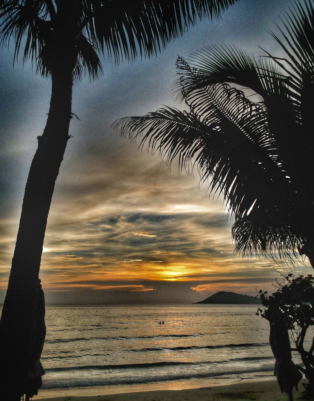 beach, sea, palm tree, tree, sunset, scenics, beauty in nature, nature, water, tranquil scene, silhouette, horizon over water, sky, tranquility, outdoors, sand, no people, wave, day