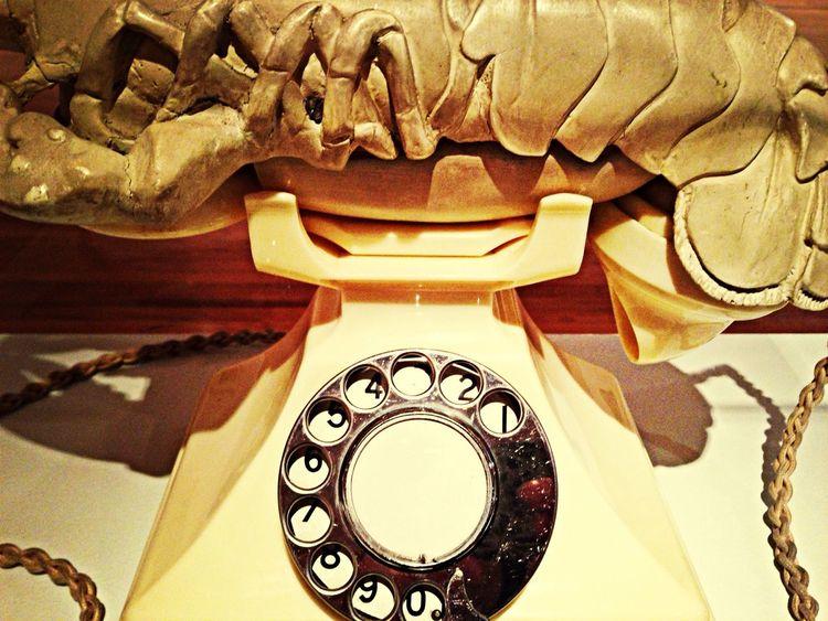 Art Exhibition Salvador Dali Readymades