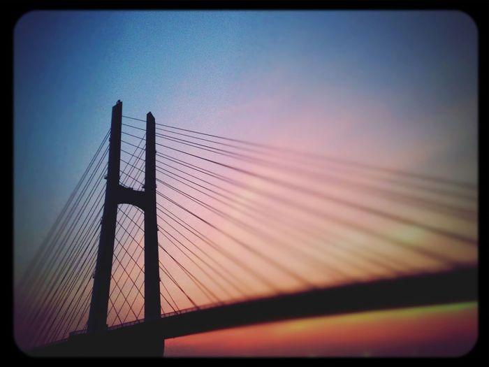 Beauty Popular Bridge