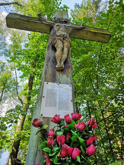 Krzyż z 1806 roku Faith Cross Krzyż Jesus Christ EyeEm Best Shots EyeEmNewHere EyeEm Nature Lover Huawei P20 Pro Huaweiphotography Silesia Best Of Silesia EyeEm Silesian Slaskie Samekopalnie EyeEm Selects Poland Tree Text Sculpture Statue Religious  Crucifix