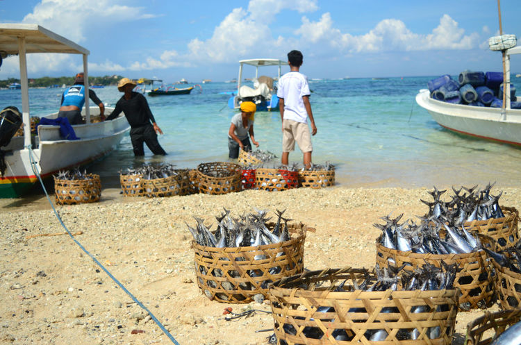 Bali Fish Basket Fishes Fishing Boat Lifestyles Outdoors People At Work Sea Shore Sky Sunny Day Water People Of The Oceans People And Places The Color Of Business