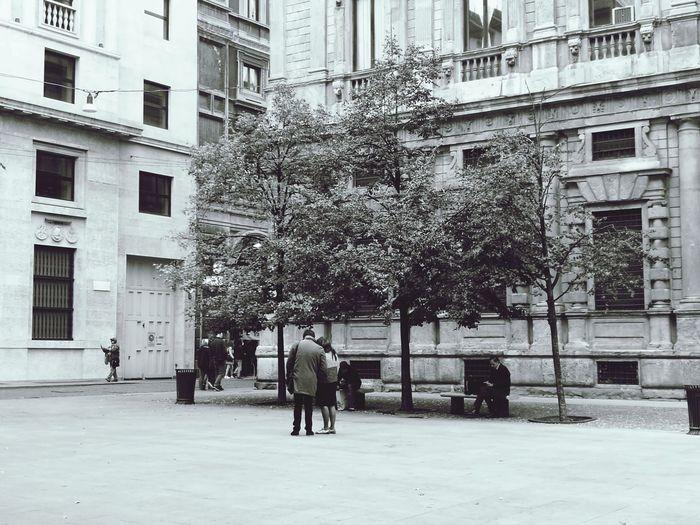 Man walking on tree in city