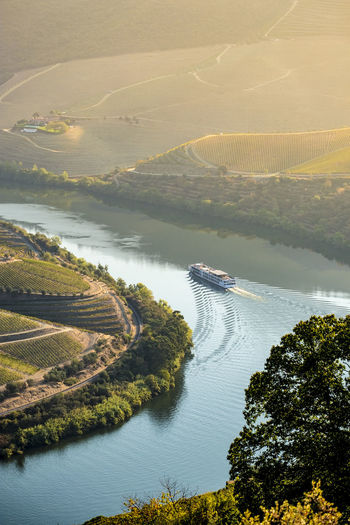 vineyards in the Douro River, Alto Douro Wine Valley Agriculture Douro  Douro River Portugal Douro Wine Producing Region Nature Portugal UNESCO World Heritage Site Agriculture Beauty In Nature Day Douro Valley High Angle View Landscape Mountain Nature Nautical Vessel No People Outdoors River Scenics Sky Tranquil Scene Tranquility Tree Unesco Vineyard Water Wine
