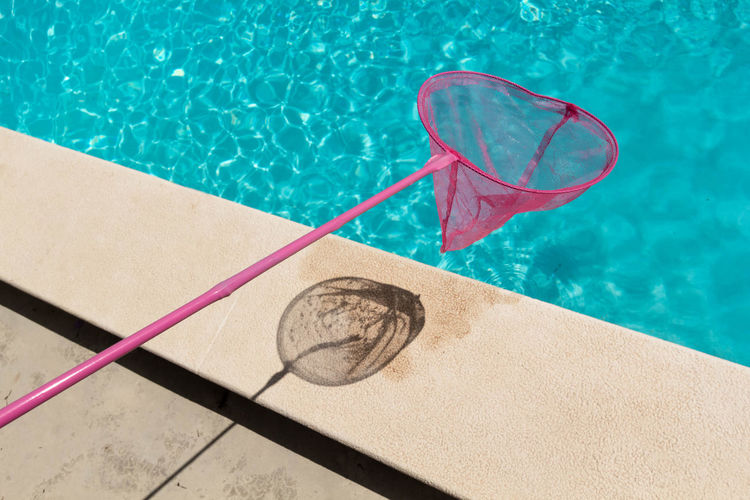 High Angle View Of Butterfly Net Over Swimming Pool