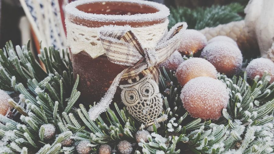 Christmas Decoration Snow ❄ Wintertime Christmas Lights TealightCandleHolder Graz Austria 🇦🇹 Close-up Nature No People Day Beauty In Nature Outdoors Freshness