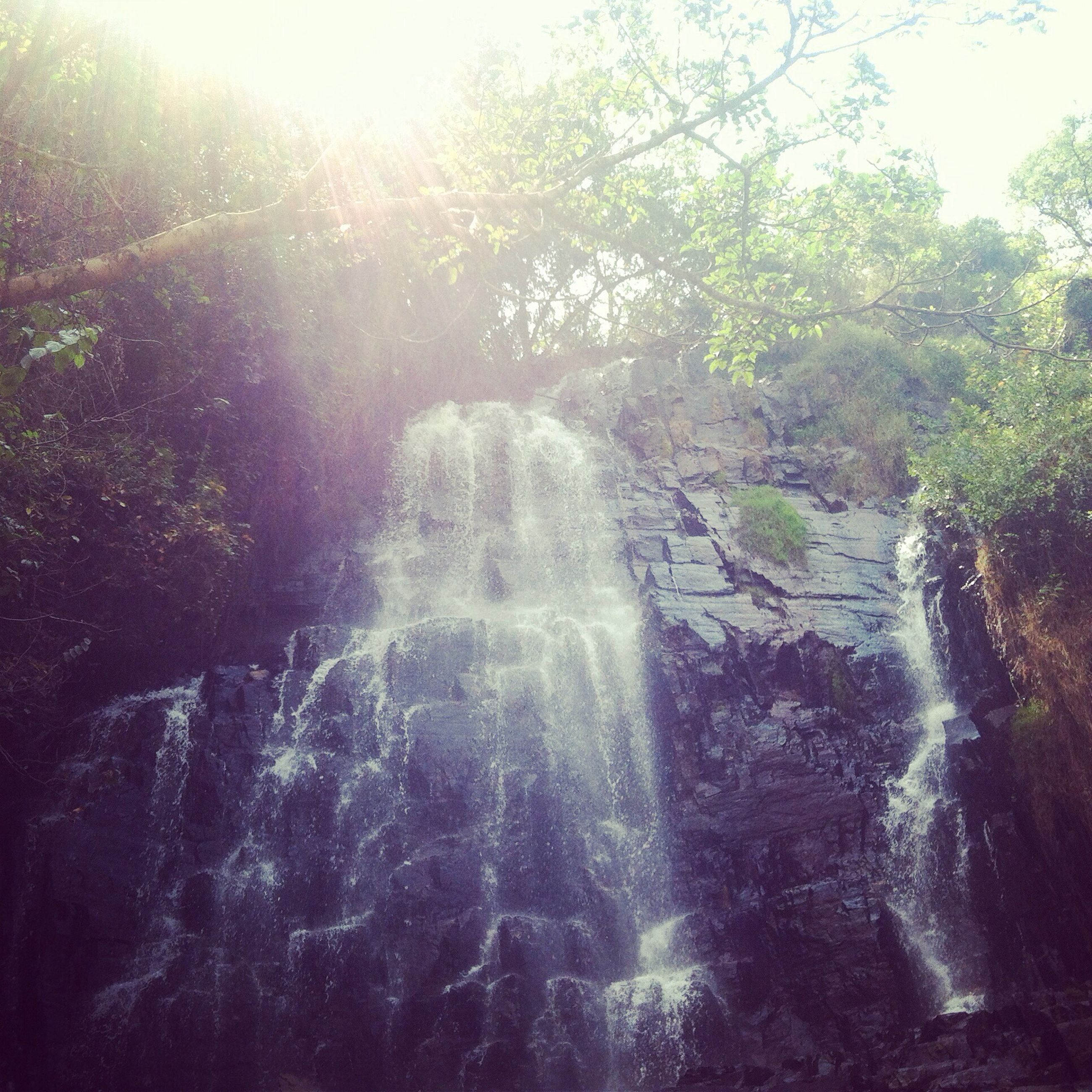 water, tree, sunbeam, sunlight, beauty in nature, nature, lens flare, sun, scenics, tranquility, tranquil scene, rock - object, motion, idyllic, growth, day, waterfall, flowing water, waterfront, sunny